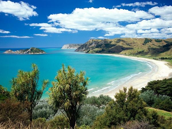 ニュージーランド水道水